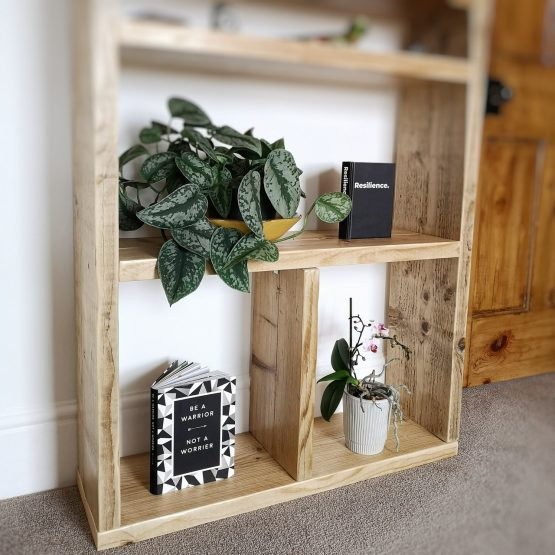 A rustic bookcase unit with plants