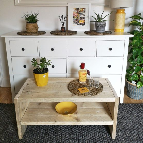 A rustic coffee table with liquer and plant
