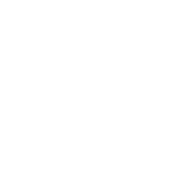 🇬🇧 THE WOODSHED STORE UK