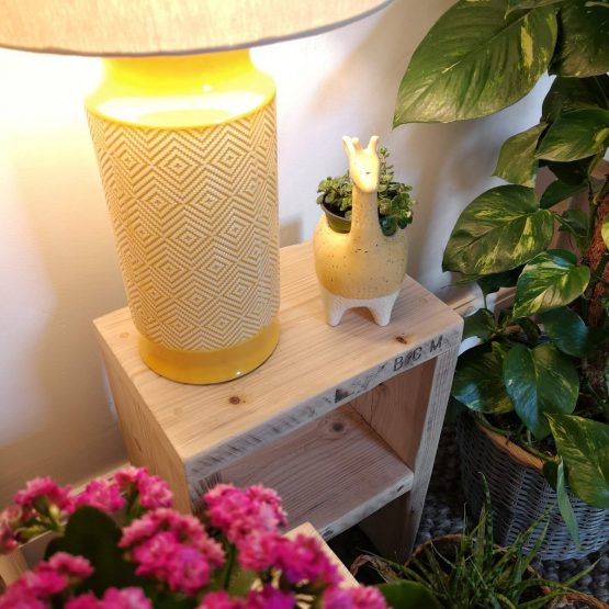 A little reclaimed timber side table with a lamp and an ornament on